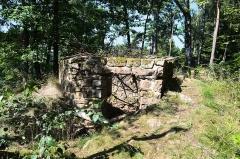 Ruines du château du Vieux-Windstein -  DSC_6588