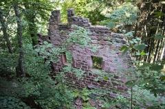 Ruines du château du Vieux-Windstein -  DSC_6654