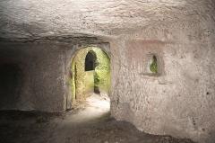Ruines du château du Vieux-Windstein -  DSC_6704