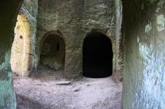 Ruines du château du Vieux-Windstein -  DSC_6700