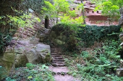Ruines du château du Vieux-Windstein -  DSC_6662