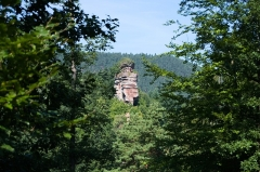 Ruines du château du Vieux-Windstein -  DSC_6611