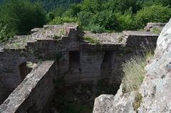 Château de Hohenbourg -  DSC_3602