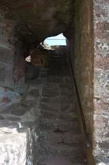 Château de Hohenbourg -  DSC_3512
