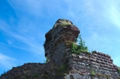 Château de Hohenbourg -  DSC_3500