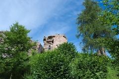 Château de Hohenbourg -  DSC_3472