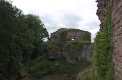 Château de Dreistein -  DSC_2353