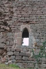 Château de Dreistein -  DSC_2352