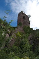 Château de Dreistein -  DSC_2419