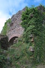 Château de Dreistein -  DSC_2393