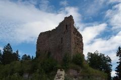 Château de Dreistein -  DSC_2436