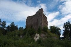 Château de Dreistein -  DSC_2435