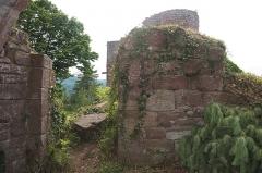 Château de Dreistein -  DSC_2390