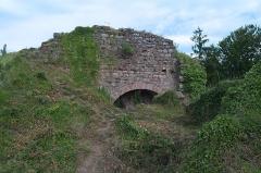 Château de Dreistein -  DSC_2379