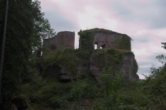 Château de Dreistein -  DSC_2350