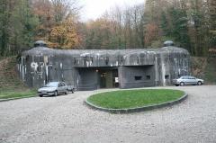 Fort de Schoenenbourg (ligne Maginot) - English: Utility entrance to Ouvrage de Schoenenburg bunker, Ligne Maginot, Alsace, France.