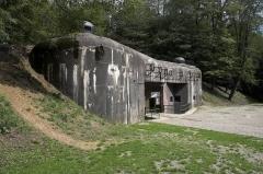 Fort de Schoenenbourg (ligne Maginot) (également sur commune de Hunspach) -  Fort Shoenenbourg(Schoenenbourg, France)