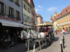 Maison -  Kutschfahrt durch das alte Colmar