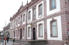 Ancien palais du Conseil Souverain d'Alsace, actuel Tribunal de Grande Instance - English: Façade of Colmar's baroque Tribunal de grande instance courthouse building.