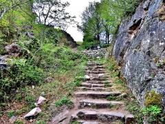 Ruines des châteaux de Weckmund et de Wahlenbourg - Français:   Seuil d\'entrée vers les ruines des trois châteaux.