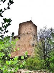 Ruines des châteaux de Weckmund et de Wahlenbourg - Français:   Tour du château de Wahlenbourg