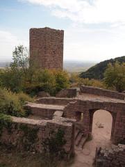 Ruines des châteaux de Weckmund et de Wahlenbourg -  Husseren les Chateaux