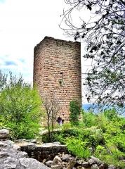 Ruines des châteaux de Weckmund et de Wahlenbourg - Français:   Tour du château du Weckmund, vue de la cour du château de wahlenbourg