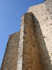 Château de la Madeleine (ruines) - English: Castle Madeleine in Chevreuse, France