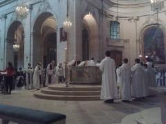 Cathédrale Saint-Louis - Français:   Procession messe action de grâce Mgr Leborgne