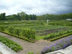 Domaine national : ancien potager du Roi et parc de Balbi - English: Grand Carre of the Potager du roi, Versailles