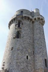 Ancien château -  La tour du château de Montlhéry, au lendemain de sa réouverture au public le 15/09/2012 lors des \