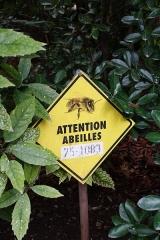 Ancien hôtel Matignon -  Beware of bees @ Garden @ Hôtel Matignon @ Residence of the Prime Minister of France @ Paris
