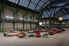 Grand Palais -  Vue du grand Palais lors de la vente Bonhams 2014.