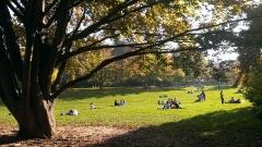 Parc Monceau - English: Les parisiens profitent du beau temps au parc Monceau.
