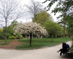 Parc Monceau -  Parc Monceau-002