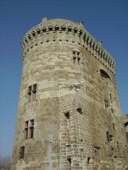 Château de la Reine Anne - Esperanto: Ĉefturo de la kastelo de Dinan