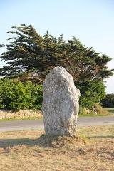Alignements mégalithiques du Toulinguet - Deutsch: Ein Menhir in den Steinreihen von Lagatjar, Bretagne.