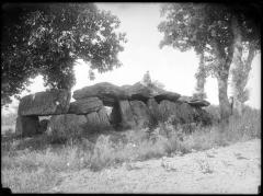 Dolmen dit La Roche-aux-Fées -  photographer