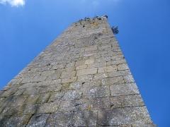 Restes du Vieux-Château -  ruines du chateau de hedé