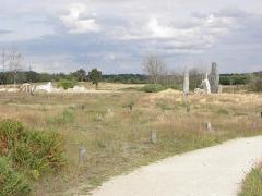 Ensemble mégalithique dénommé alignements de Cojoux - Français:   Alignements des Landes de Cojoux à Saint-Just (35).