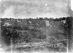 Alignement et dolmen de Kerlescan -