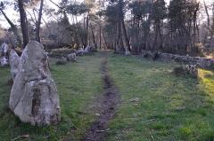 Alignements du Petit-Ménec - Français:   Succession de menhirs dits alignements du Petit-Ménec. Ces pierres font partie des alignements de Carnac (France).