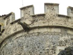 Ancien château fort - Français:   Saint-Saturnin, comm. du Puy-de-Dôme (France, région Auvergne). Gargouille ornant la tour ronde de l\'aile droite (ouest) du château.