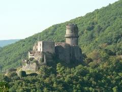 Château fort de Tournoël - Château de Tournoël vu depuis Beauvaleix (hameau de la commune d'Enval).