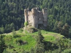 Restes du château fort - Français:   Ruines du château d\'Alleuze.