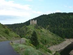 Restes du château fort - English: Alleuze river and Château d'Alleuze