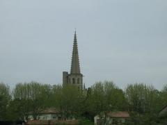 Ancienne cathédrale Saint-Maurice, actuellement église paroissiale -  Le clocher de la cathédrale de Mirepoix (Ariège, France)