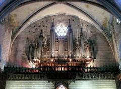 Ancienne cathédrale Saint-Maurice, actuellement église paroissiale - English: Organ of Mirepoix - France (Link, 1891)
