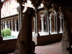 Ruines de l'église des Cordeliers - Français:   Musée des Augustins, gargouille  du cloitre de dos