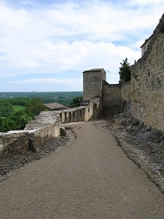 Restes des remparts - English: Gate of Irissou, a medieval gate in the city wall of Puycelsi, Tarn, France. The gate is a double defense system (photo taken forward the second gate).